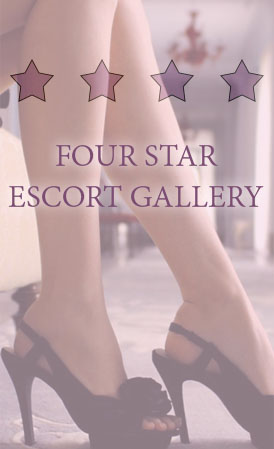 Four star high class escort dates for worldwide hotel dinner dates