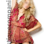 Be introduced to a luxury top model to escort you on dinner dates